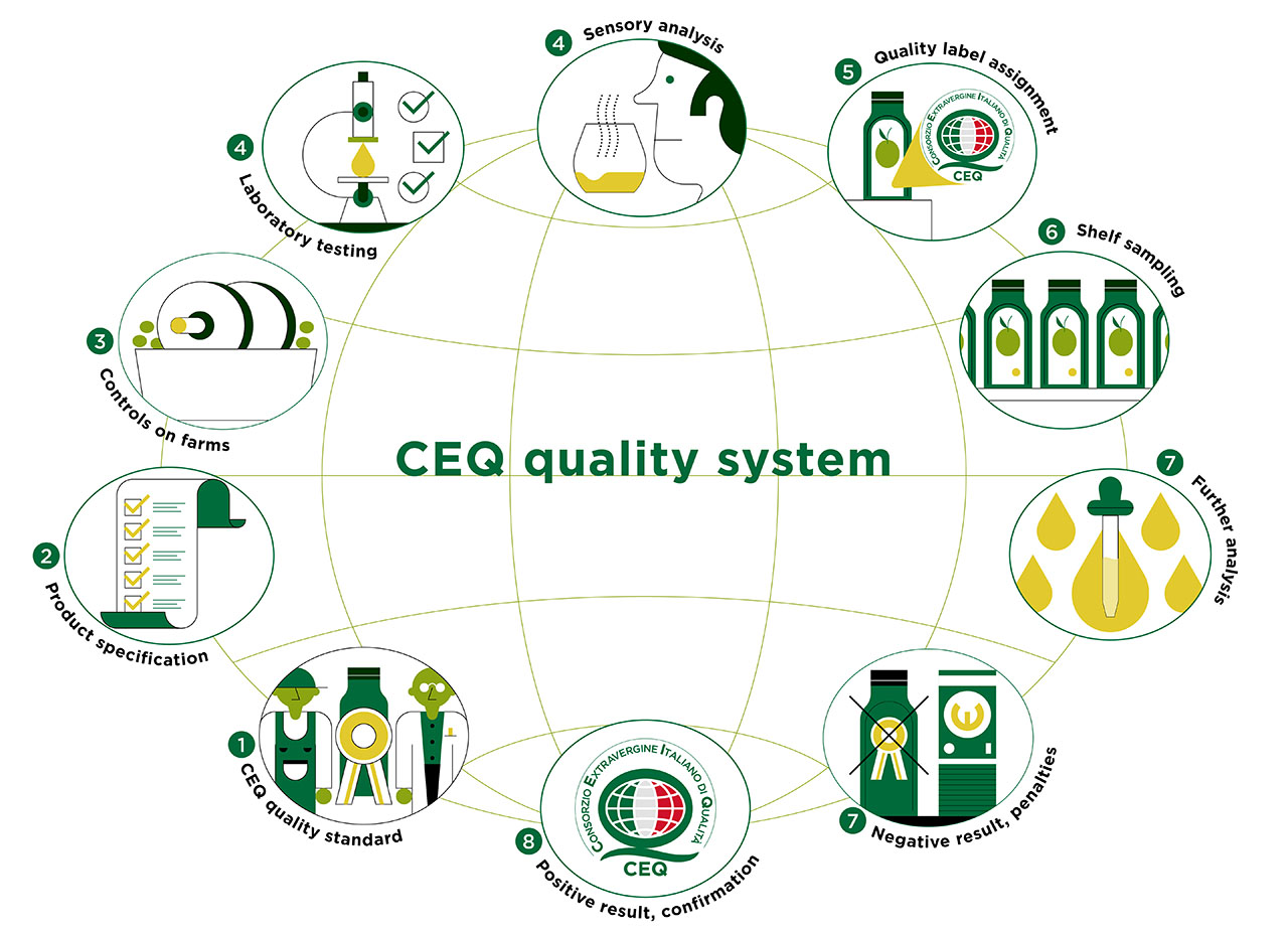 CEQ extra vergin olive oil quality system